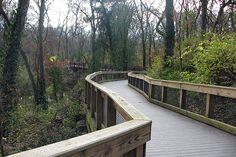 Elevated walkway leading to the bridge over Richland Creek