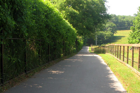 path along farm