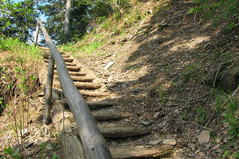 Upper switchback and steps