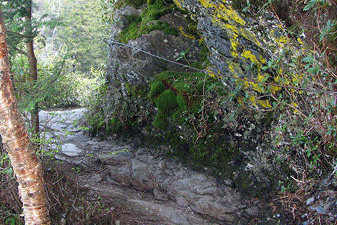 a blind corner on the trail