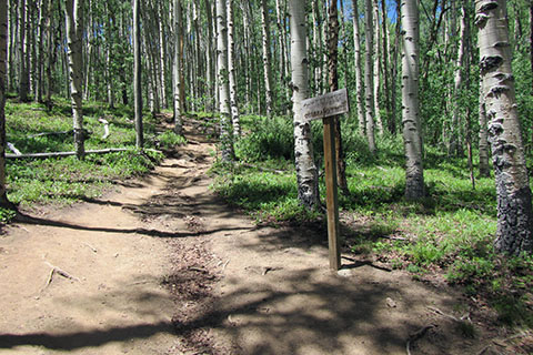 Starting the South Mount Elbert Trail