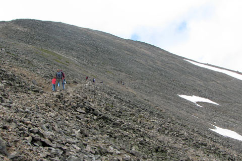 Trail crossing Grays Peak North Slope above the Tower