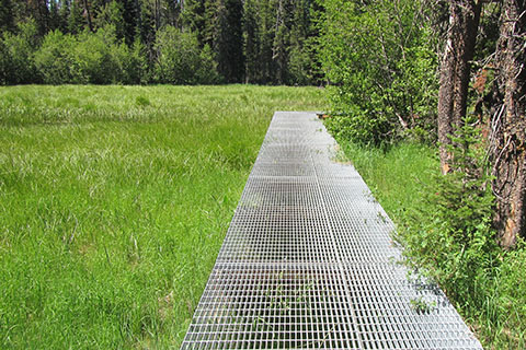 Metal grate walkway across wet grassland