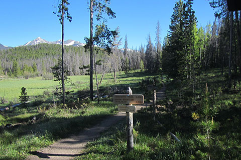 Trail sign after leaving Onahu Trailhead. Meadow stands behind the trail