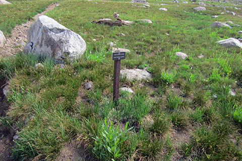 Directional Sign showing the way to Paintbrush Divide