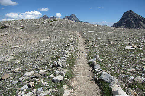 The trail along Paintbrush Divide