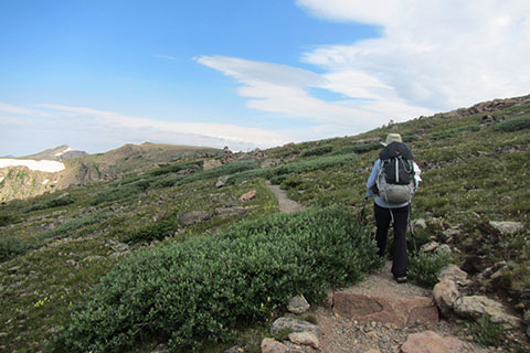 Hiker climbing through the alpine tundra