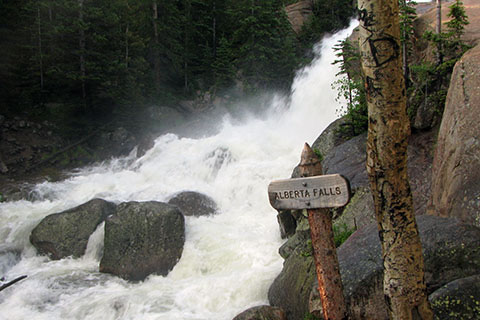 Early morning at Alberta Falls. Glacier Creek is running at early summer flooding stage
