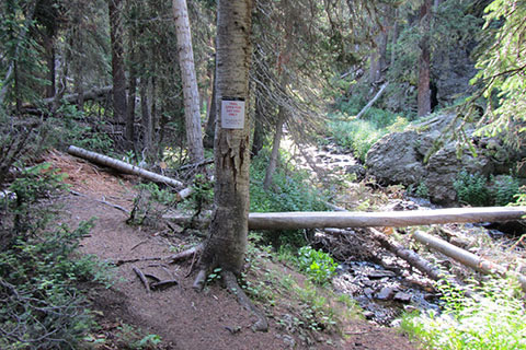 Long Meadows Trail Junction, a bridge crosses Timber Creek.