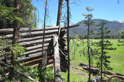 Ruins of a log cabin next to the trail on the west side of Big Meadow
