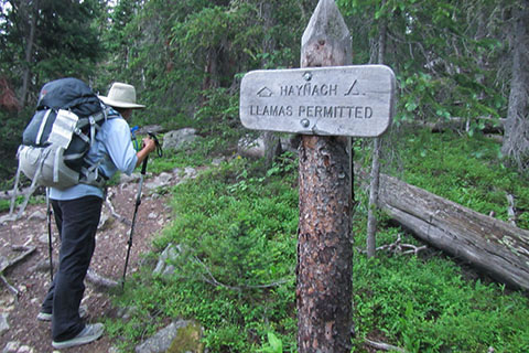 HIker starting up the steep Haynach Lake Trail next to the Haynach trail sign