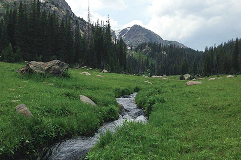 Tonahutu Creek passing through meadow with Peak 12,216' in the background