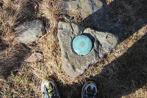 The benchmark on Gregory Bald