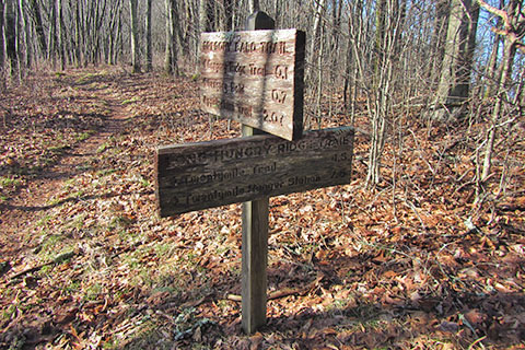 Trail distances sign at the junction of Long Hungry Ridge Trail and Gregory Bald Trail
