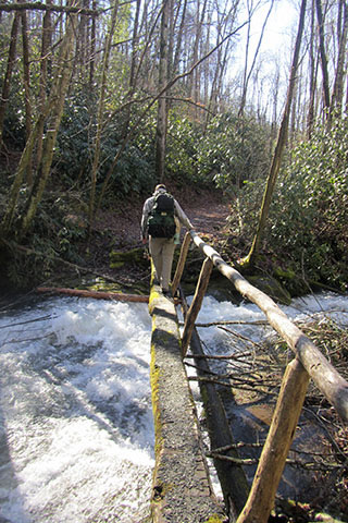 crossing a footbridge in Great Smoky Mountain National Park