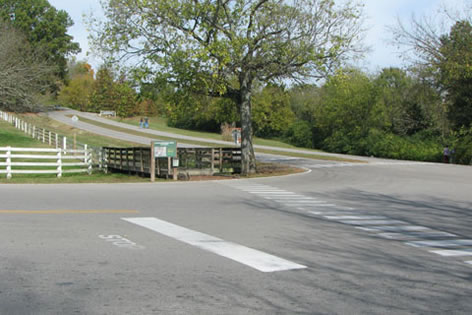 crossing at Lower Marchant Drive
