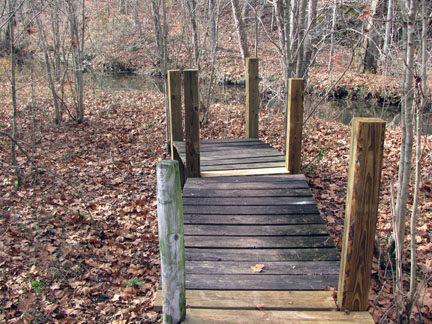 Boardwalk to wetlands