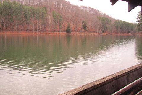 lake from the boathouse