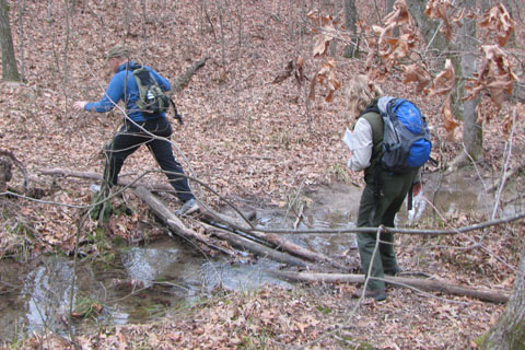 crossing drainage on logs